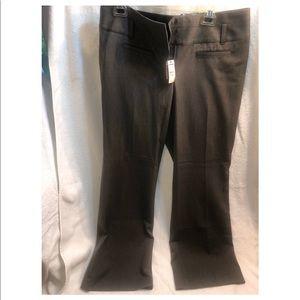 Express flare leg grey dress pants